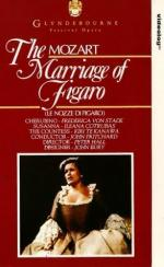 essay on the marriage of figaro Le nozze di figaro - the marriage of figaro one definition of a masterpiece could be a work that delights successive generations and gives pleasure to people of different levels of sophistication on that basis the marriage of figaro qualifies as the supreme operatic masterpiece.