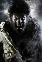 Райан Гослинг превратится в Человека-волка