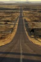 Элла Манжеева снимет мистическую драму о долгой дороге