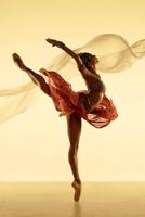 Русские корни американского балета