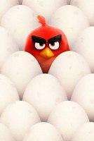 Гневливые птицы и голограмма Тома Хэнкса: смотрите на этой неделе