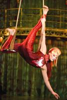 Марго Робби взлетит под купол цирка