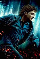 Голодные игры Гарри Поттера