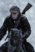 Постеры: мировое господство обезьяны на коне