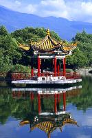 Ренни Харлин остается в Китае