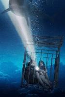Назначена новая встреча с акулами
