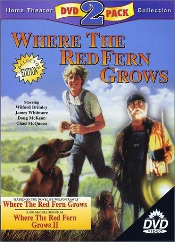 red fern movie comparison